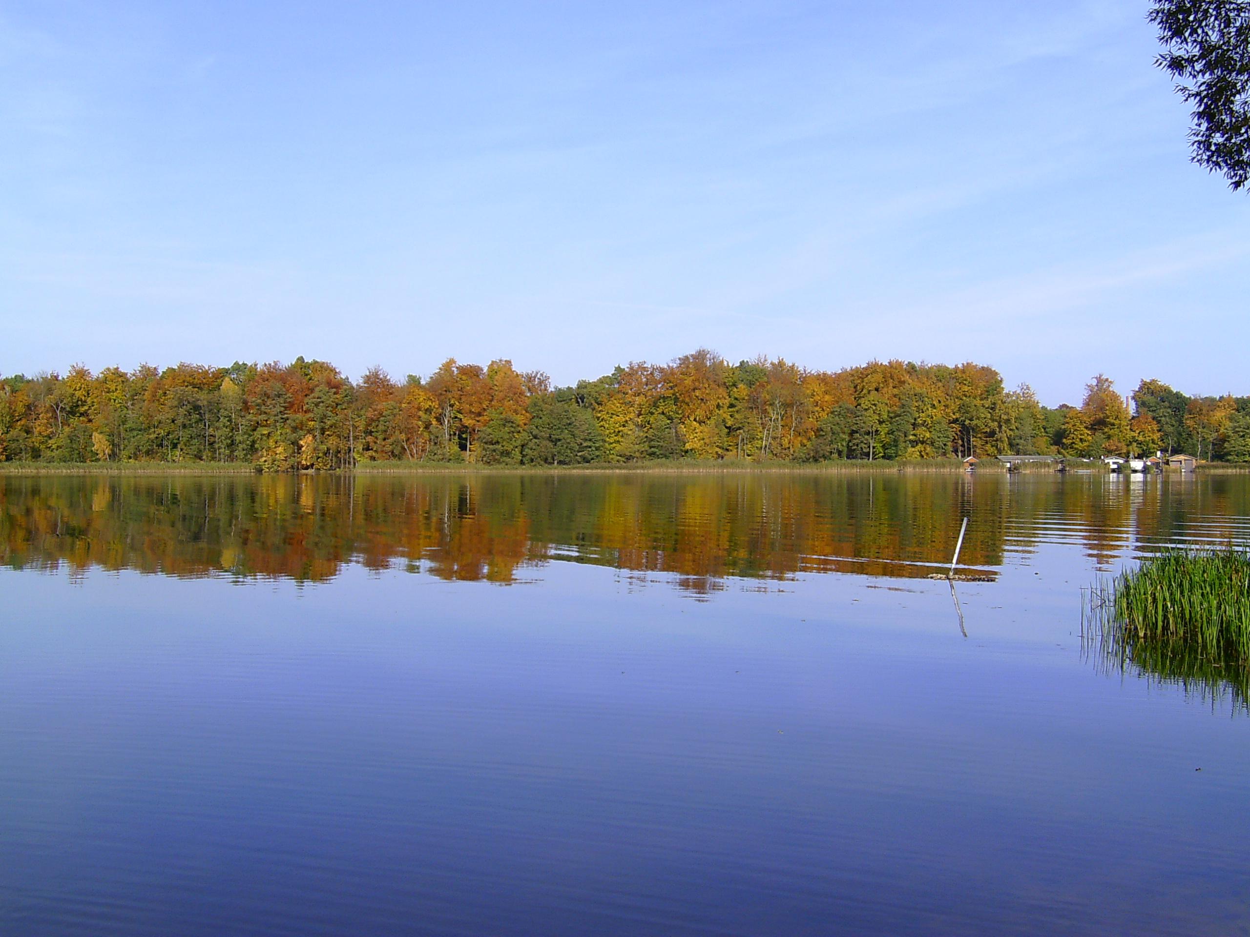 Ein See. Blauer Himmel. Im Hintergrund Bäume.