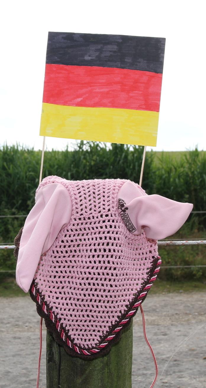 Ein rosa Fliegenhäubchen für Pferde mit einer selbstgemalten Deutschland-Fahne