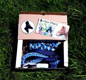 Ein geöffneter Karton. Man sieht ein schönes Halfter mit passendem strick. Beides ist in Blautönen gehalten.