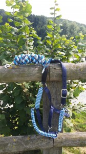 Ein Halfter in Blautönen mit passendem Führstrick hängt an einem Holzzaun.
