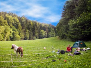 Zelten mit Pony