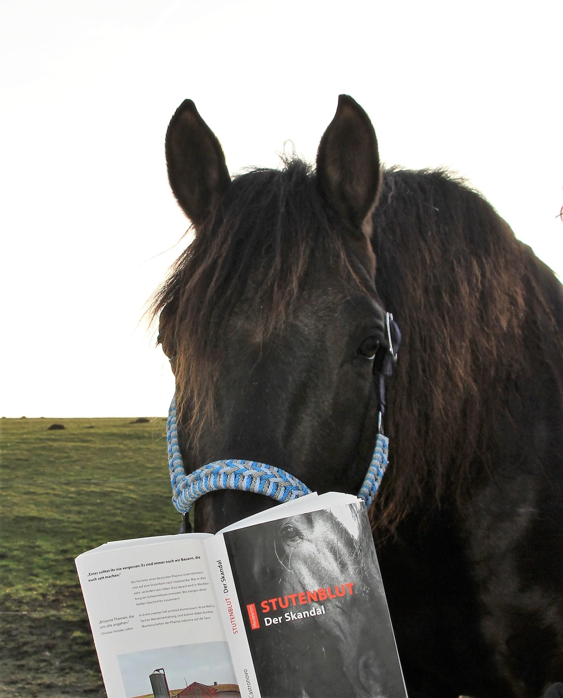 Lucero hält seine Nase in ein Buch und tut so, als könne er lesen