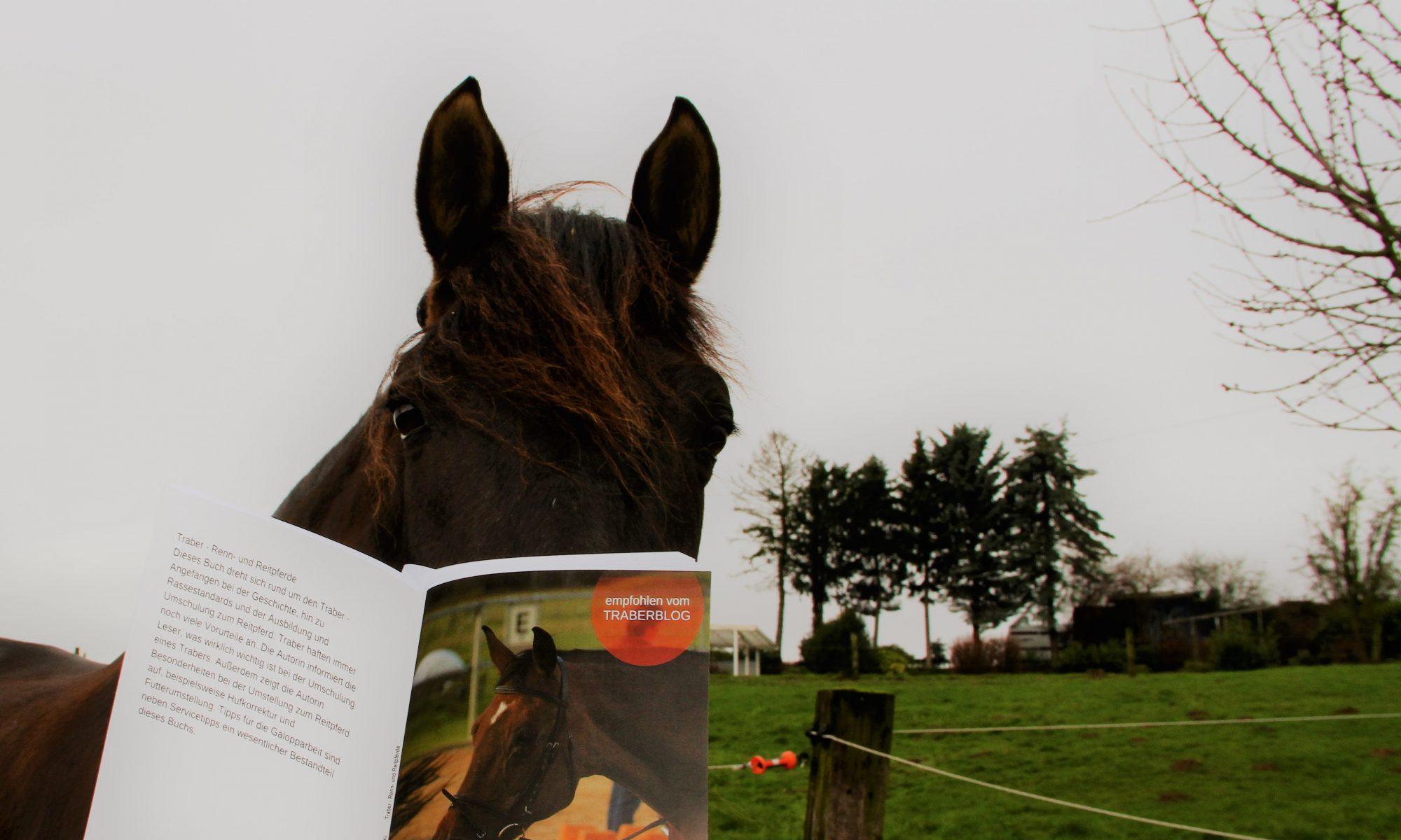 Das spanische Mähnenwunder und das Traber-Buch